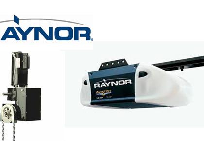 Repuestos Raynor