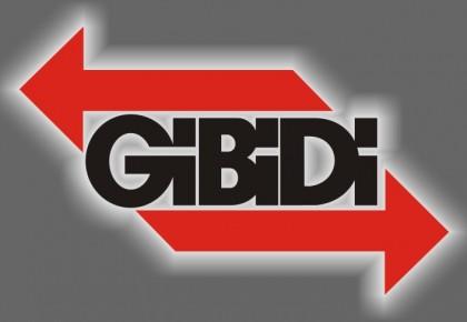 Servicio Técnico Oficial GiBiDi